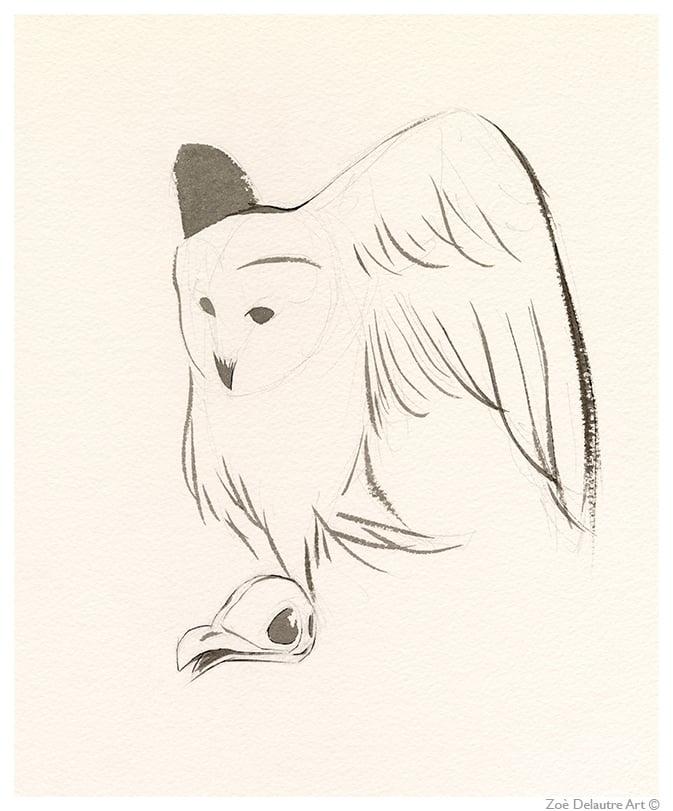 Image of White Owl Memento Mori