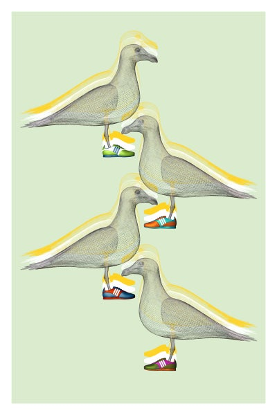 Image of Seagull Art Print