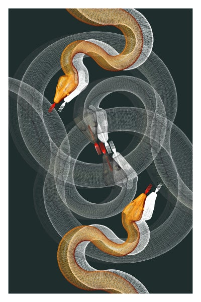 Image of Snake Art Print
