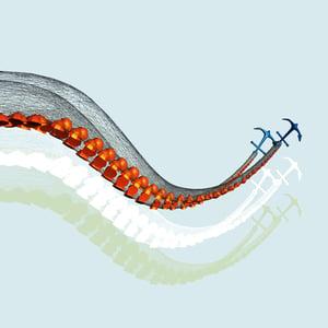 Image of Octopus Art Print