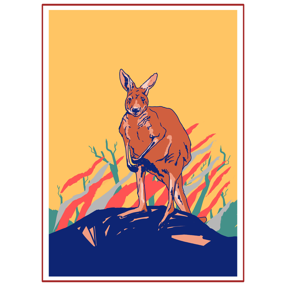 Image of Anya's Kangeroo Design for Wildlife Victoria