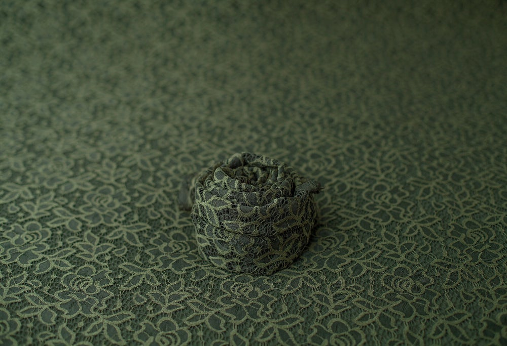 Image of Adriana Lace Backdrop - olive