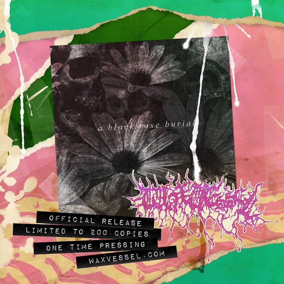 Image of A BLACK ROSE BURIAL - An Awakening of Revenants