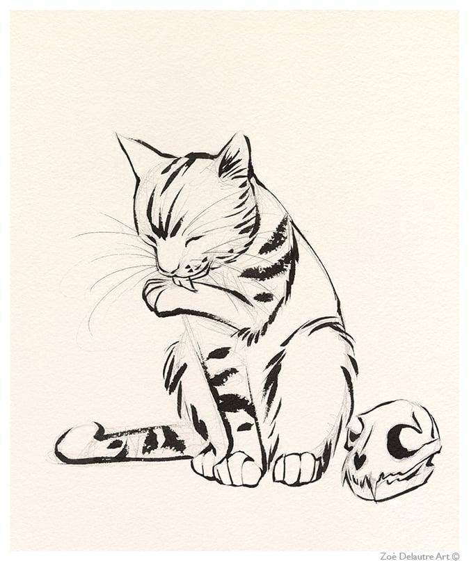 Image of Cat Memento Mori