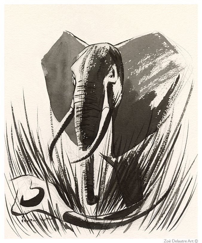 Image of Elephant Memento Mori