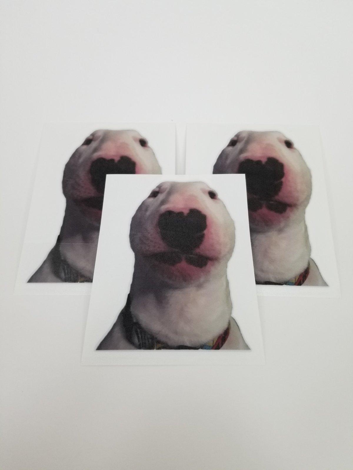 Image of Doggo