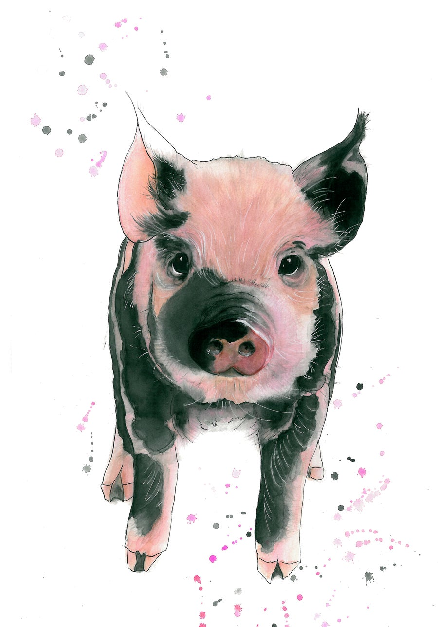 """Image of """"Cutie Pie"""" Piglet - From The CountryLife Collection"""