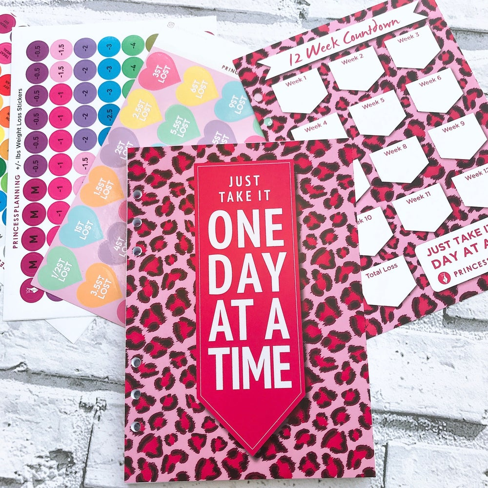 Image of ONE DAY AT A TIME FOOD DIARY INSERT REFILL BUNDLE