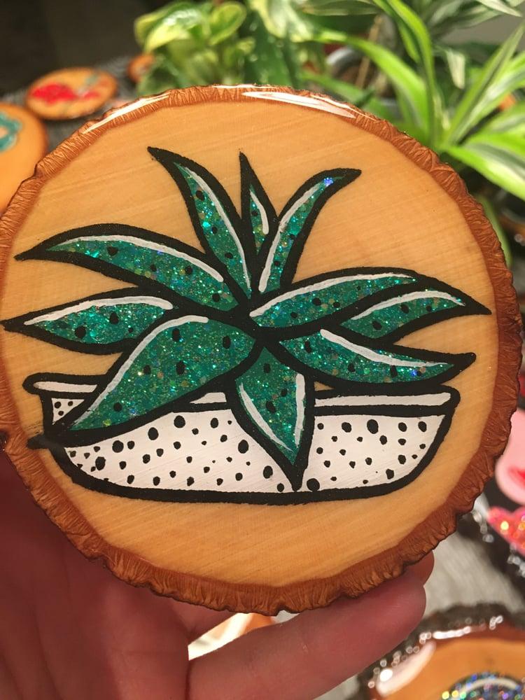 Image of Succulent 1