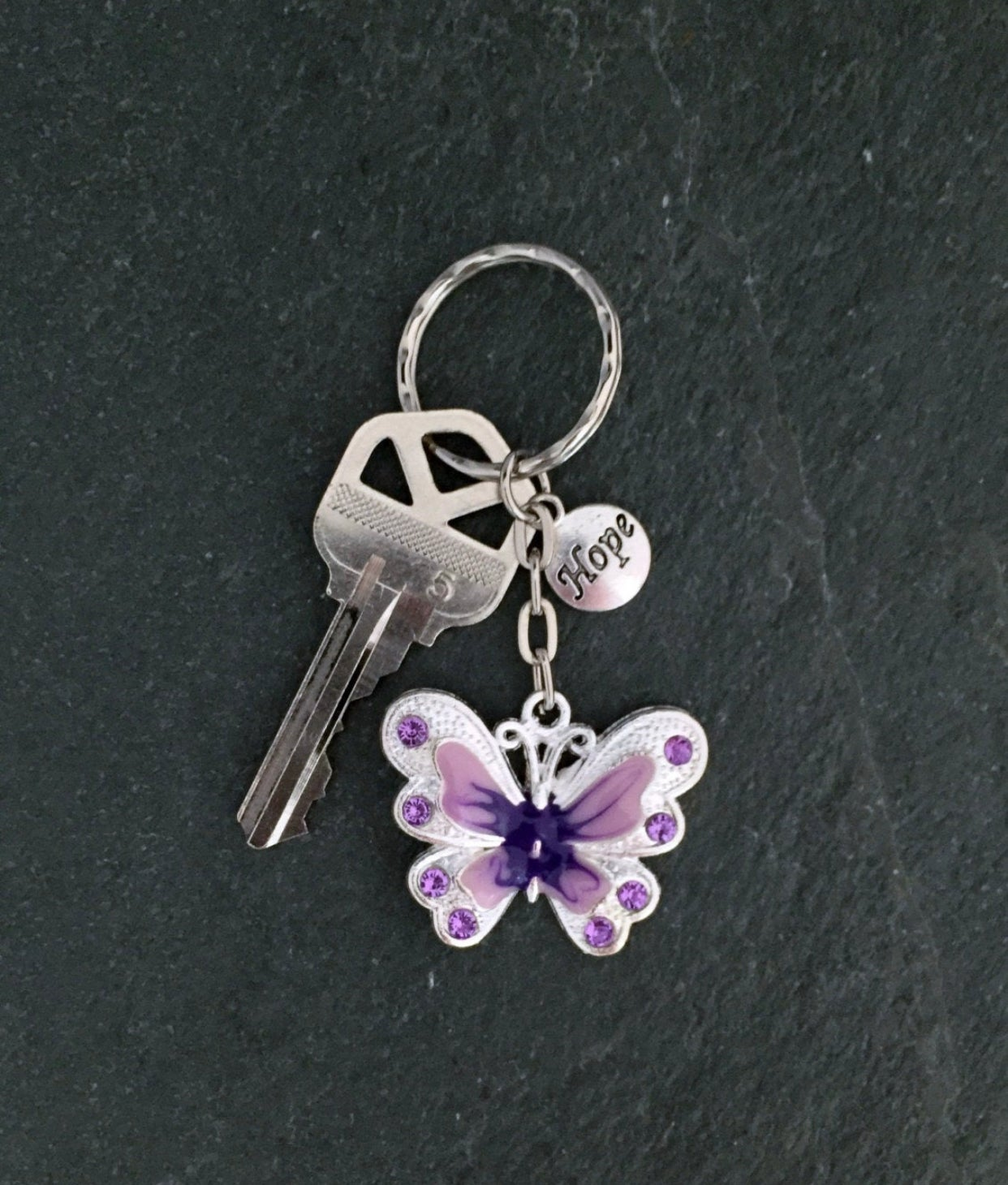 Image of Lupus Butterfly Keychain