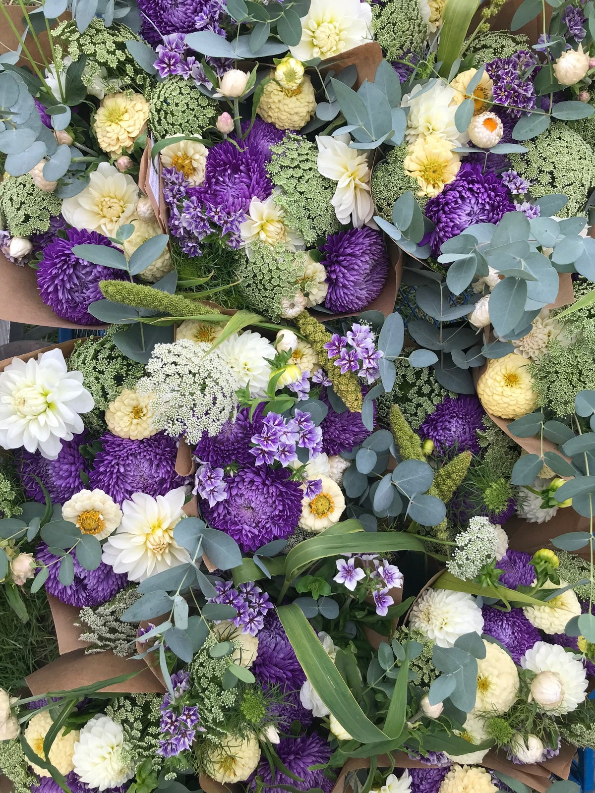 Biweekly Seasonal Mixed Bouquet CSA Share