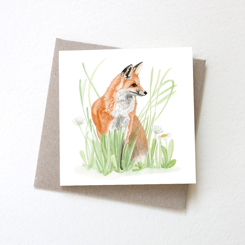 Image of Little Fox