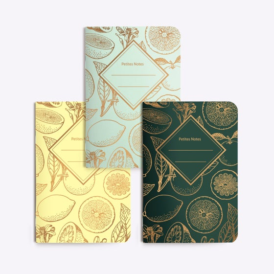 Image of TRIO PETITS CARNET LEMONADE