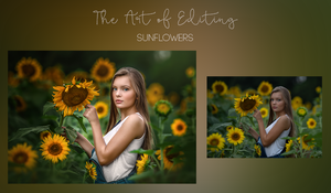 Image of The Art of Editing -Sunflowers
