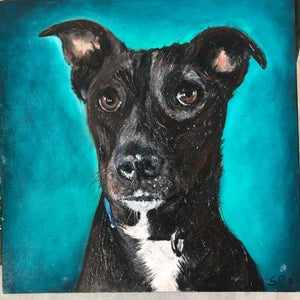 Image of Paint Your Pet with ARTIST Sharon Peterkin