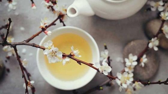 Image of White Tea Refresher