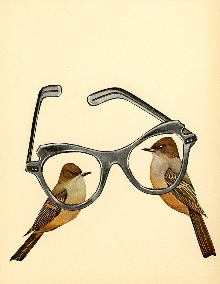 Image of Bird Nerds. Limited edition collage print.