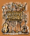 Infamous Stringdusters Vic Theatre