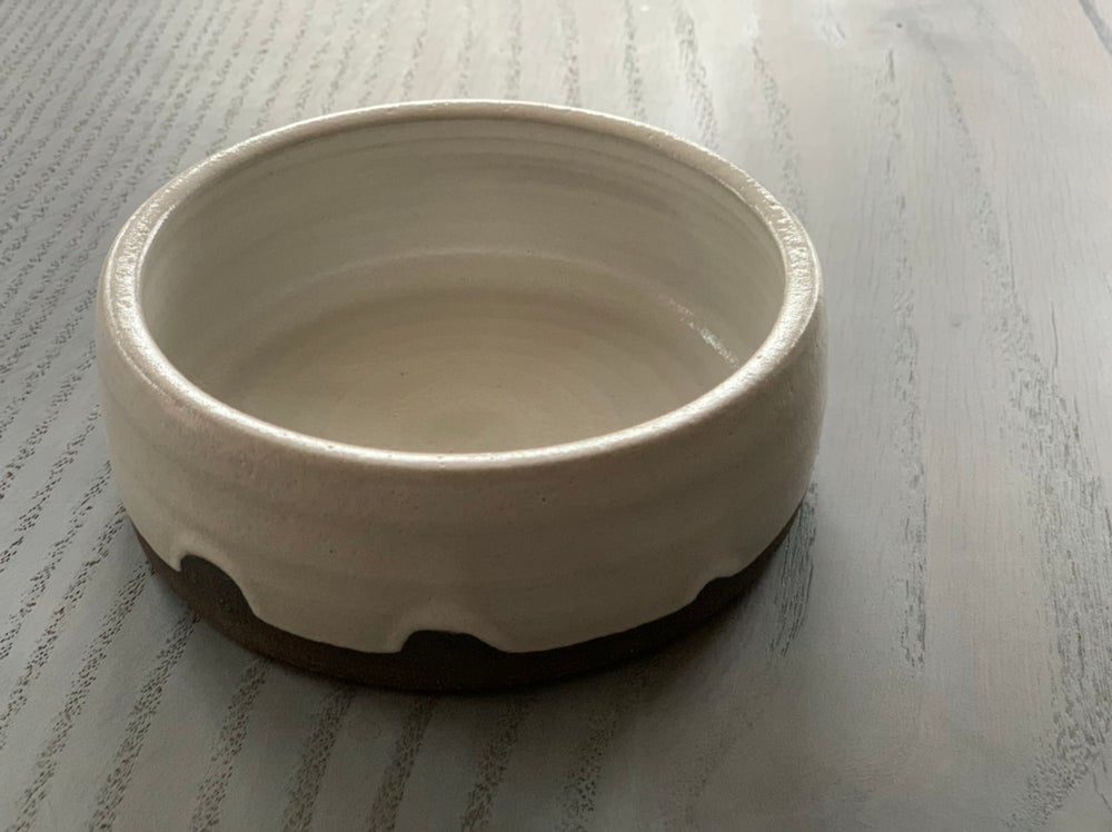 Image of Perfect Pet Bowl