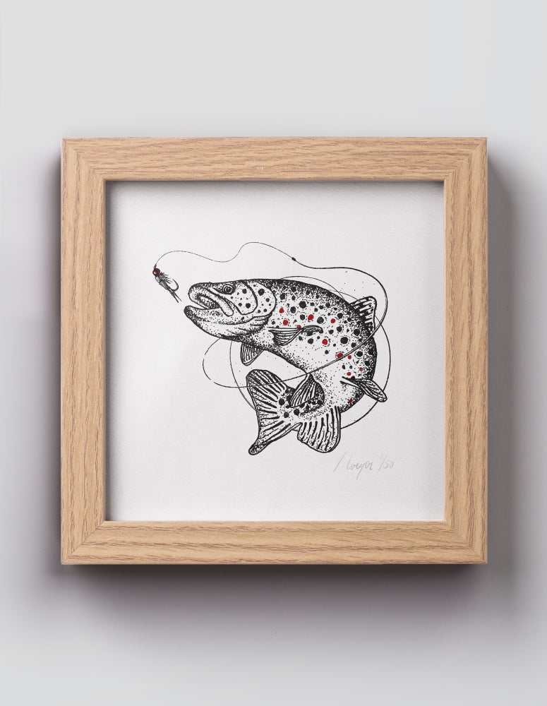 Image of Brown Trout 15×15