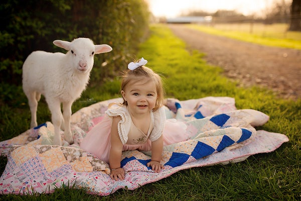 Image of Lamb Sessions on the Farm {Retainer Fee}