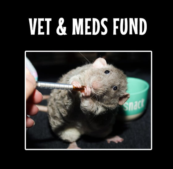 Image of MMH Medicine and Vet Fund