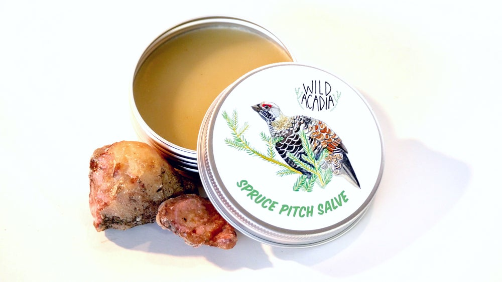 Image of Spruce Pitch Salve