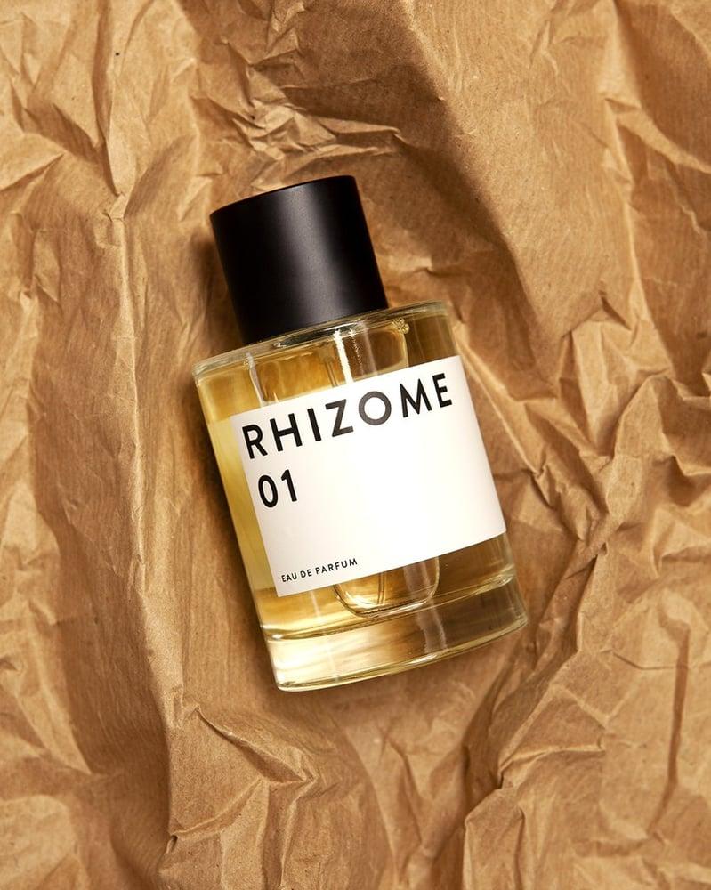 Image of Rhizome 01