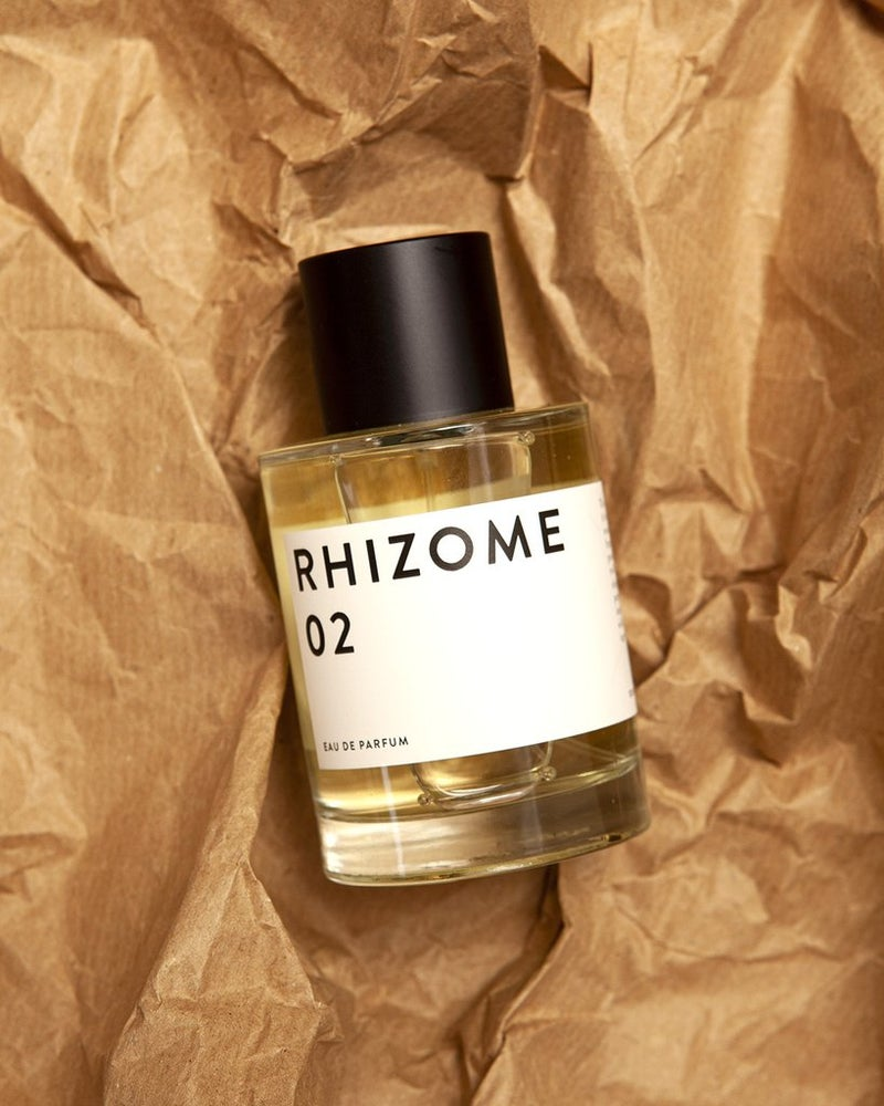 Image of Rhizome 02
