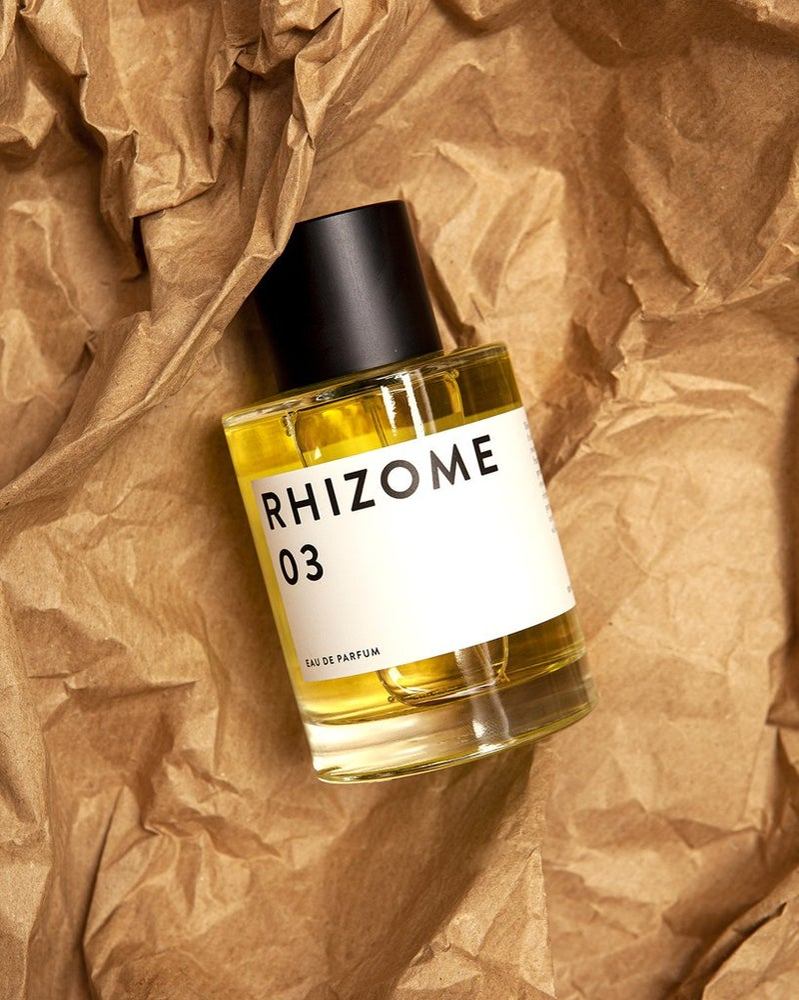 Image of Rhizome 03