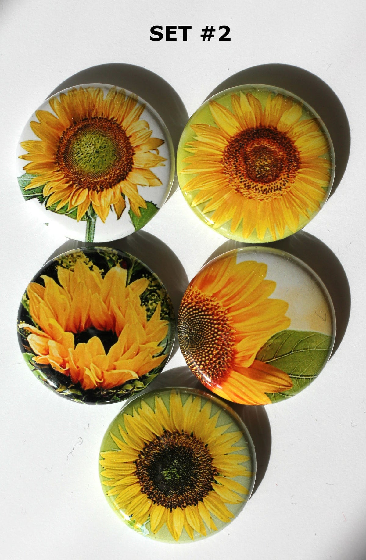 Image of Sunflower Flair