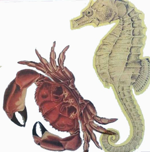 Seahorse and Crab Tile