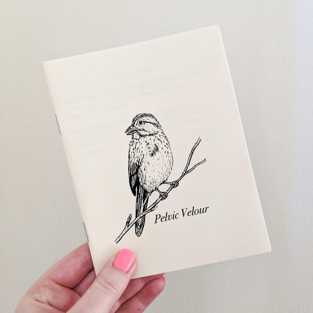 Image of Pelvic Velour Vol. 1