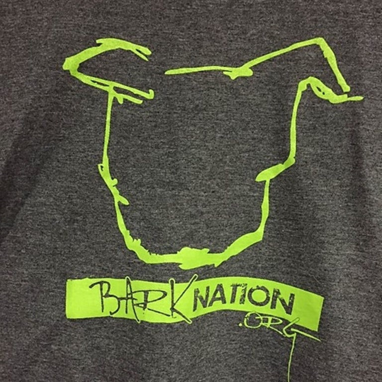 Image of Long Sleeve - BN Soft-Style Classic  - Charcoal + Lime