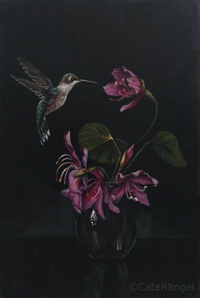 Image of Hummingbird with Orchid Tree Flowers - Original Painting