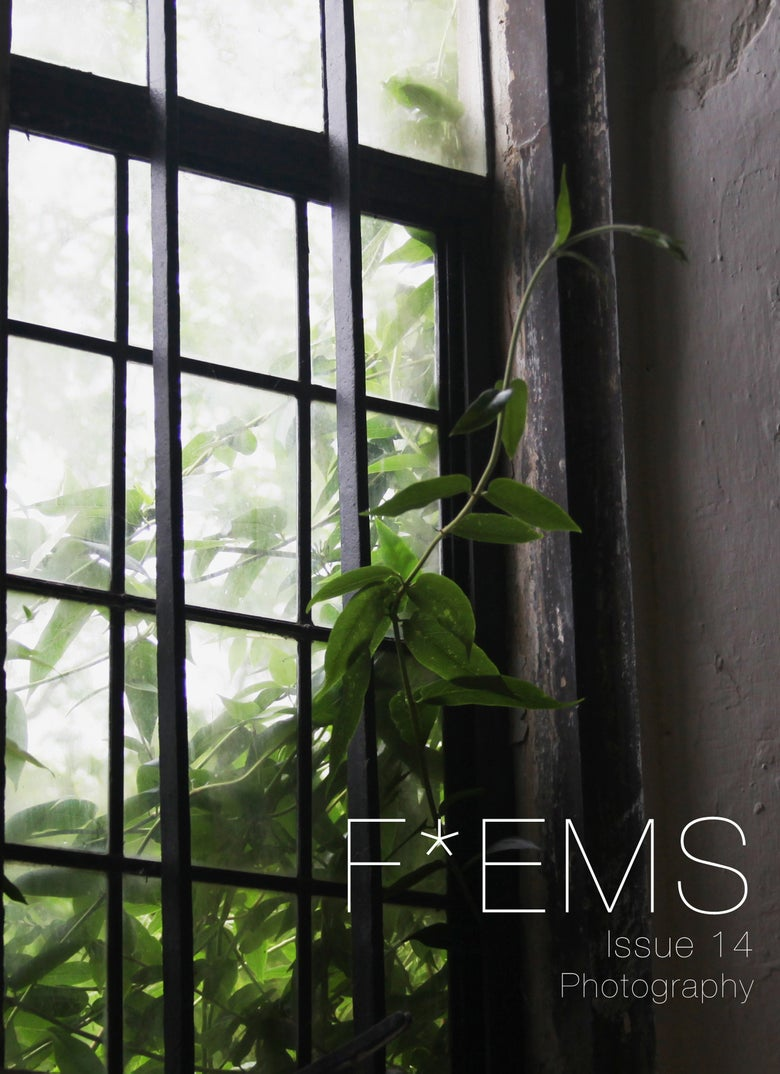 Image of F*EMS zine issue 14