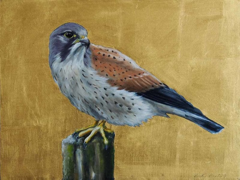 Image of BECKY MUNTING - 'KESTREL' - ORIGINAL OIL ON WOOD WITH GOLD LEAF