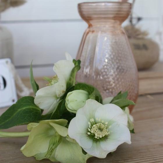 Image of Vase à jacinthe en verre rosé.