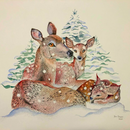 Image 2 of Deer in Snow