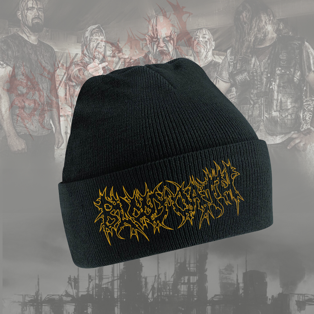 Image of Embroidered Beanie hat