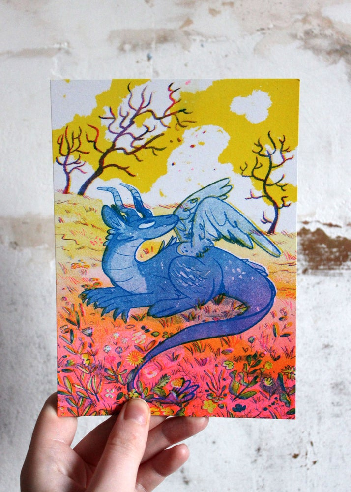 Image of Meadow Dragon