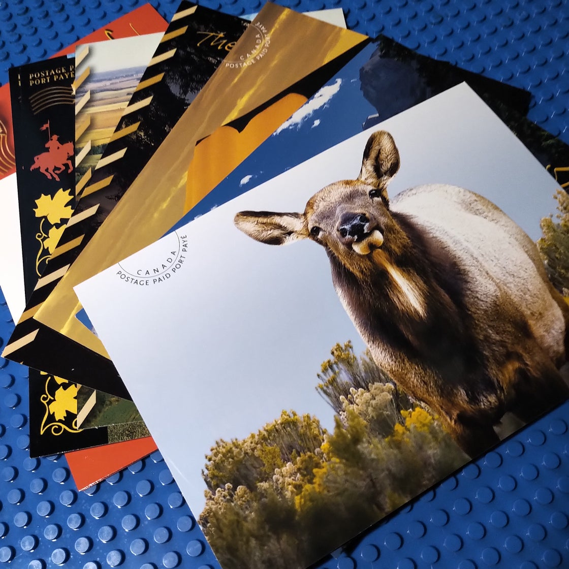 Image of Postcards / Stickers