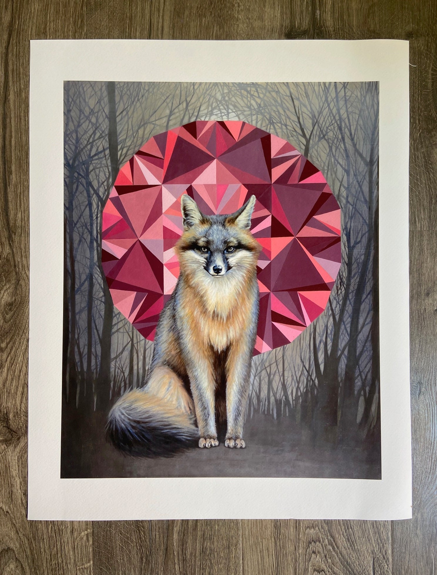 "Image of ""Urocyon cinereoargenteus"" Giclee Print"