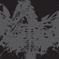 Image of AMENRA - Mass II / VINYL LP (silver clear mix color)