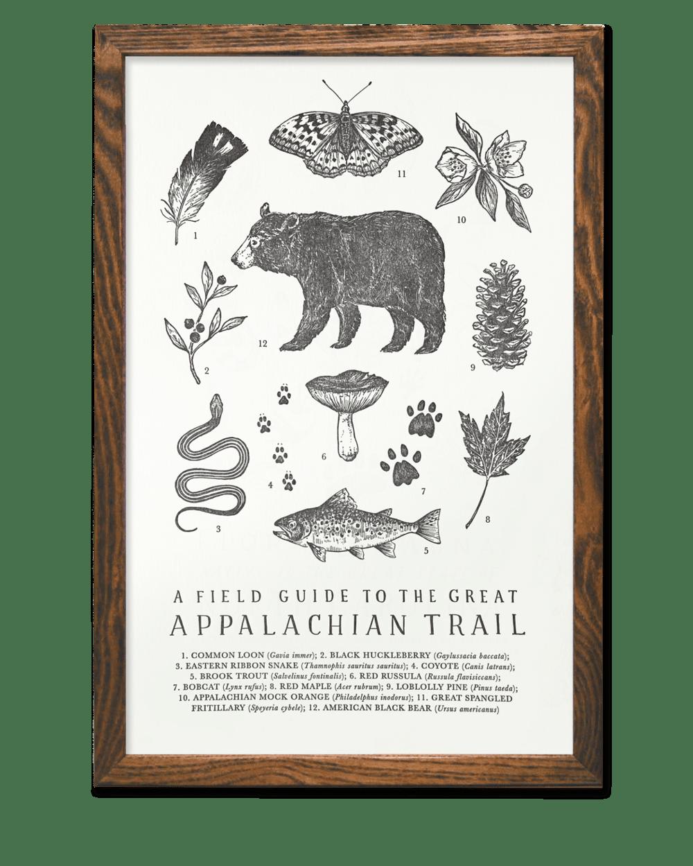 Image of Appalachian Trail Field Guide Letterpress Print by The Wild Wander