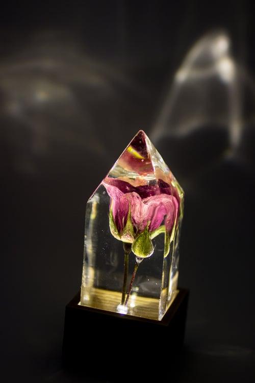 Image of Pink Rose (Rosa) - Floral Prism Desk Light #1