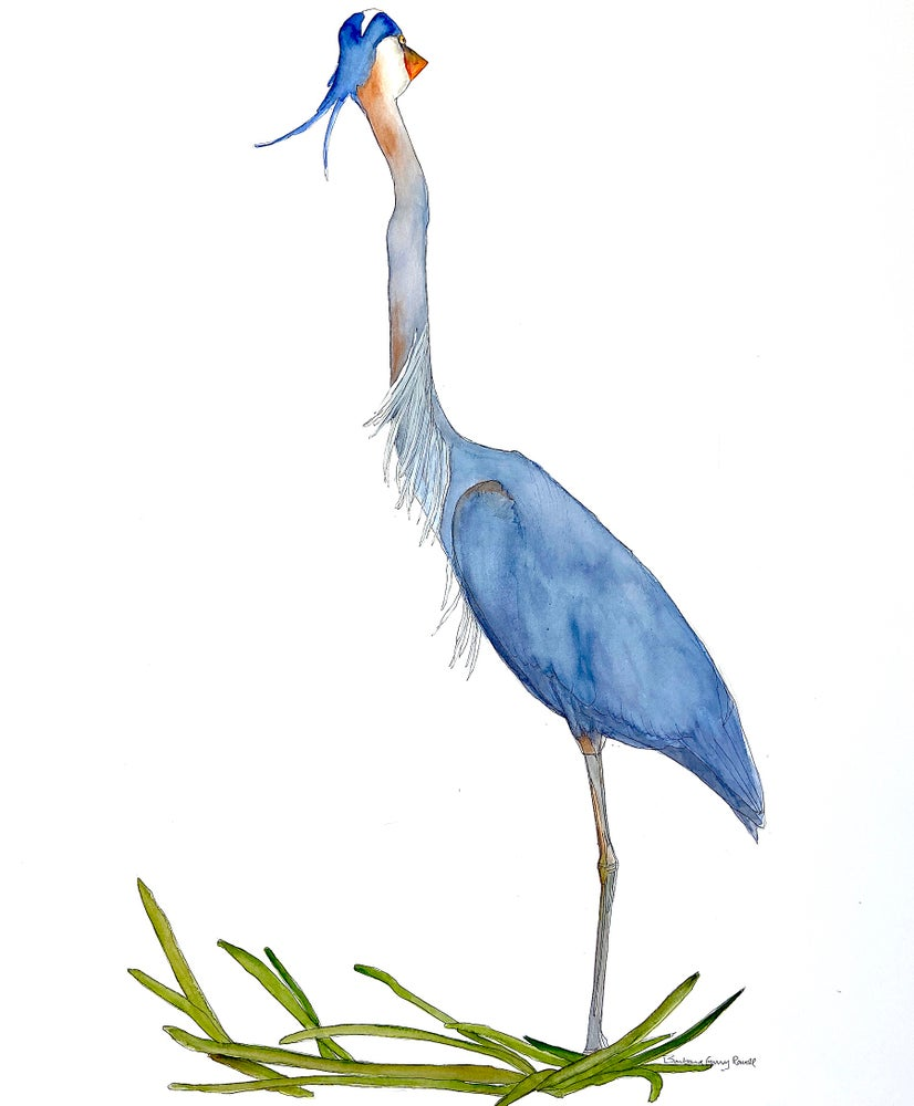 Image of Heron in the wind.