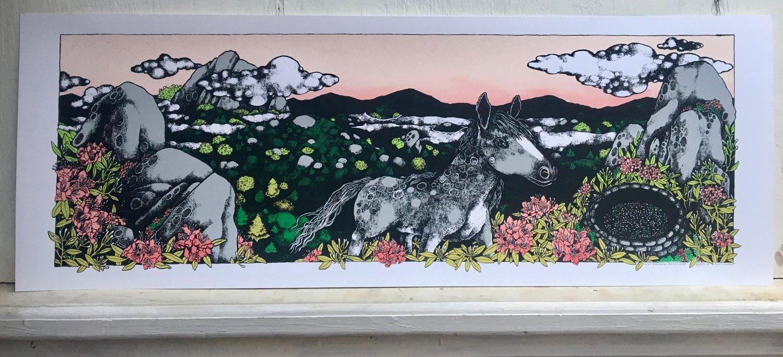 Image of Pony Breath (Rhododendron Gap)