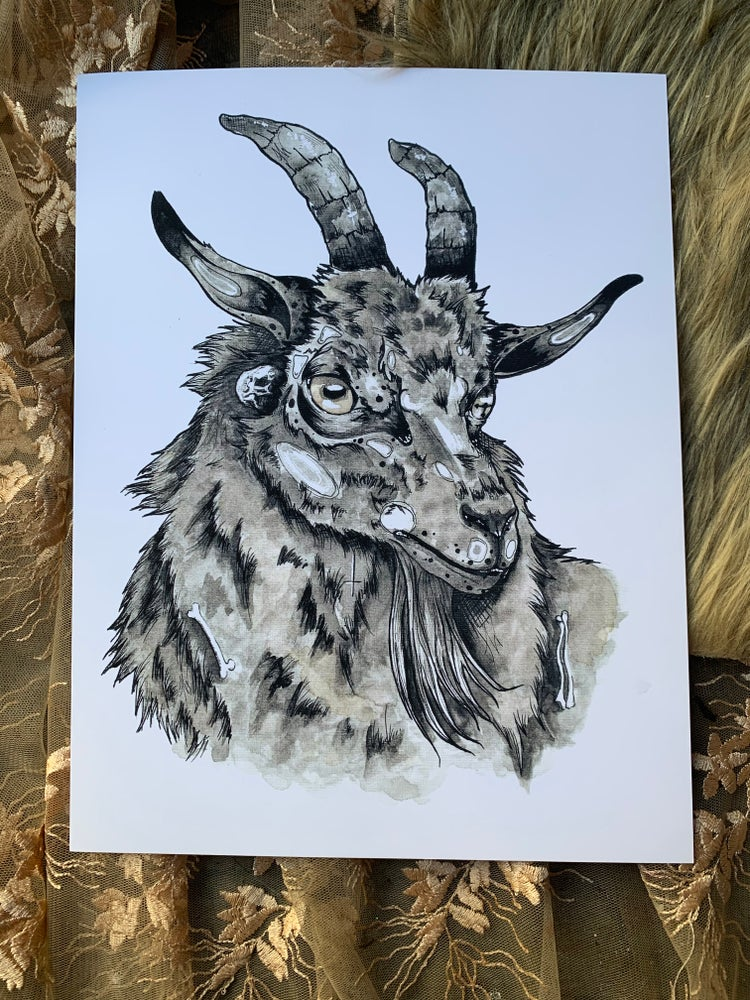Image of Black Sheep Print