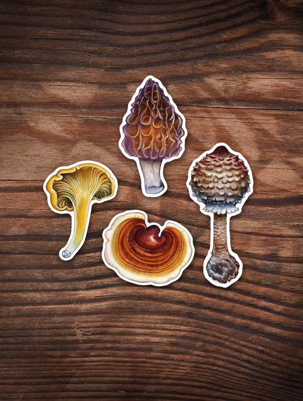 Image of EDIBLE SHROOM STICKER SET 2